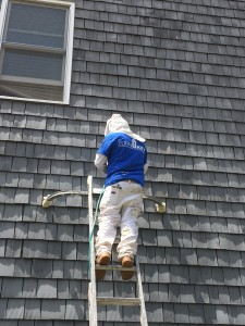 Neighborhood Maintenance April 2015