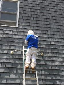 Neighborhood Maintenance April 2015